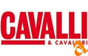 Cavalli & Cavalieri